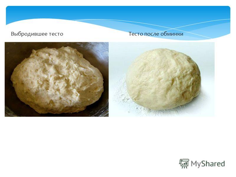 Выбродившее тесто Тесто после обминки