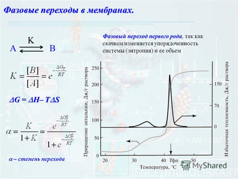 G = H– T S G = H– T S АB K Фазовые переходы в мембранах. Фазовый переход первого рода Фазовый переход первого рода, так как скачком изменяется упорядоченность системы (энтропия) и ее объем – степень перехода