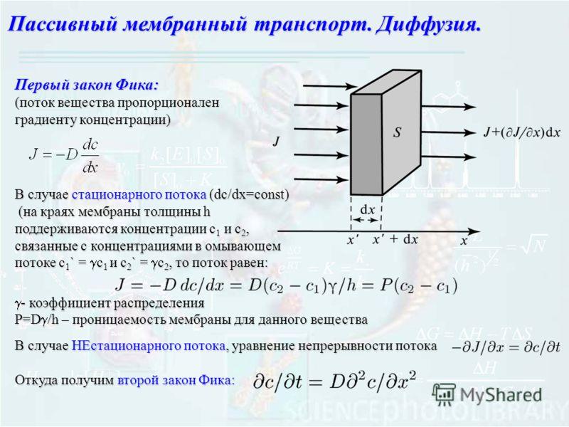 Пассивный мембранный транспорт. Диффузия. Первый закон Фика: (поток вещества пропорционален градиенту концентрации) В случае стационарного потока (dc/dx=const) (на краях мембраны толщины h (на краях мембраны толщины h поддерживаются концентрации с 1