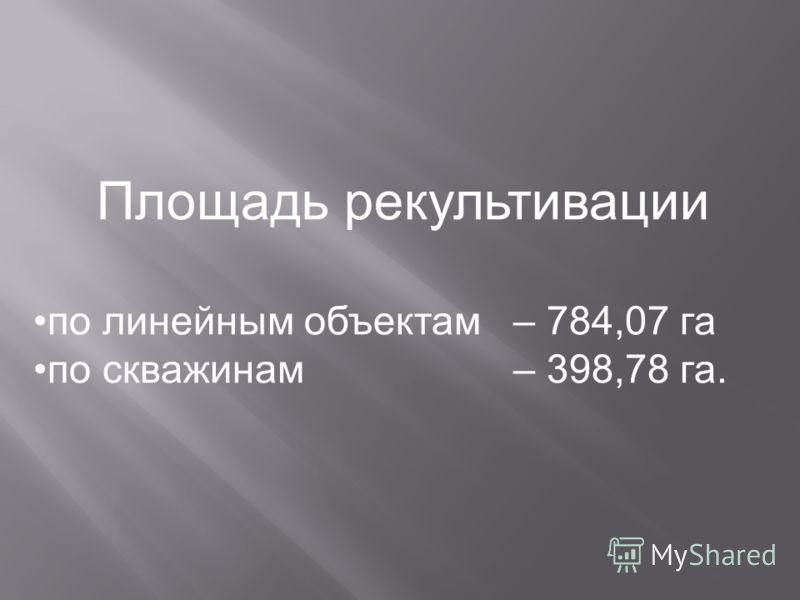 Площадь рекультивации по линейным объектам – 784,07 га по скважинам – 398,78 га.