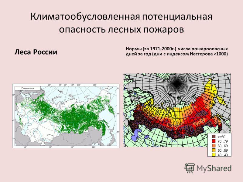 Климатообусловленная потенциальная опасность лесных пожаров Леса России Нормы (за 1971-2000г.) числа пожароопасных дней за год (дни с индексом Нестерова >1000)