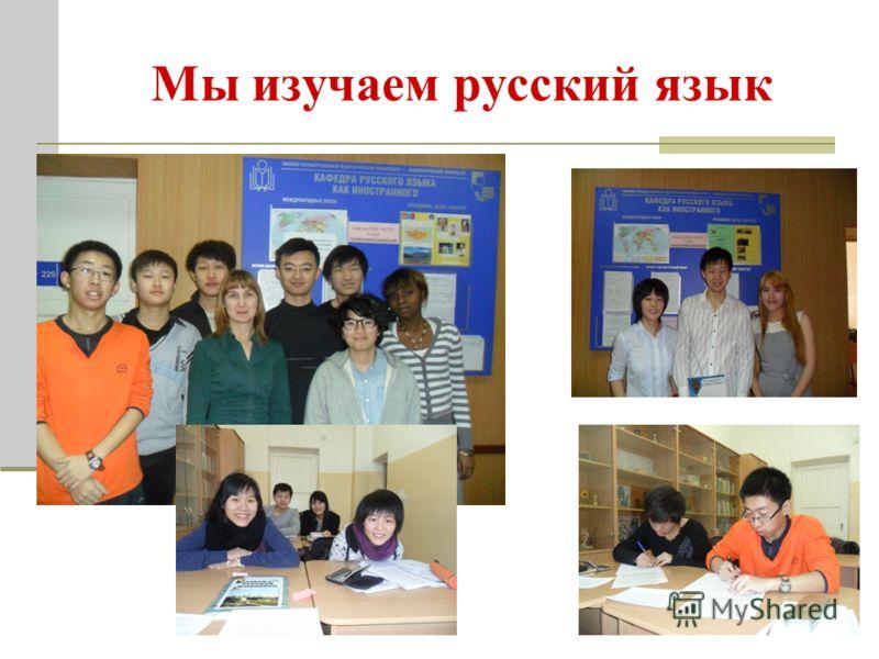 Мы изучаем русский язык
