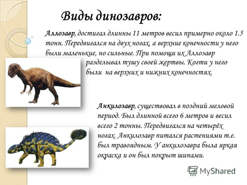 Виды динозавров: Аллозавр, достигал длинны 11 метров весил примерно около 1.5 тонн. Передвигался на двух ногах, а верхние конечности у него были маленькие, но сильные. При помощи их Аллозавр Анкилозавр, существовал в поздний меловой период. Был длинн