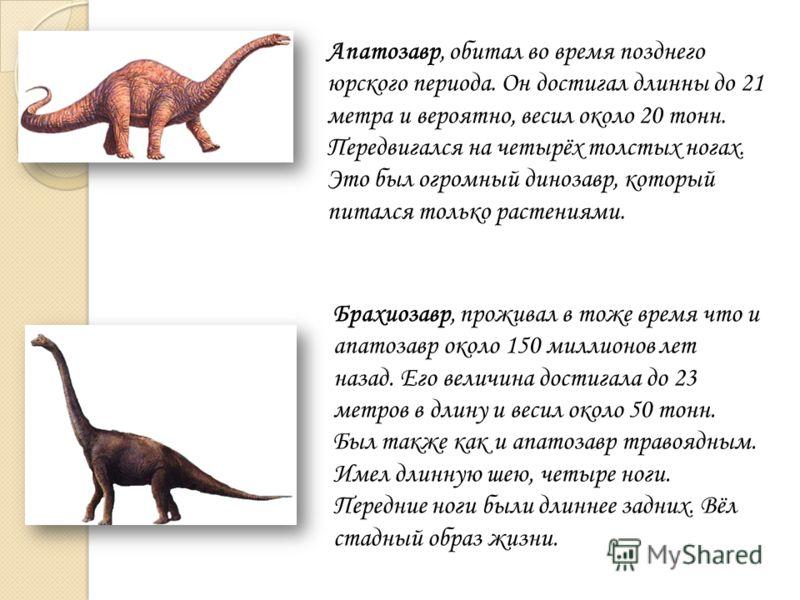 Апатозавр, обитал во время позднего юрского периода. Он достигал длинны до 21 метра и вероятно, весил около 20 тонн. Передвигался на четырёх толстых ногах. Это был огромный динозавр, который питался только растениями. Брахиозавр, проживал в тоже врем