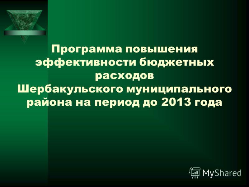 Программа повышения эффективности бюджетных расходов Шербакульского муниципального района на период до 2013 года