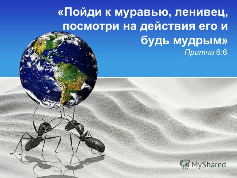 «Пойди к муравью, ленивец, посмотри на действия его и будь мудрым» Притчи 6:6