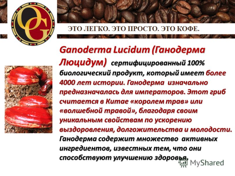 Ganoderma Lucidum (Ганодерма Люцидум) сертифицированный 100% биологический продукт, который имеет более 4000 лет истории. Ганодерма изначально предназначалась для императоров. Этот гриб считается в Китае «королем трав» или «волшебной травой», благода