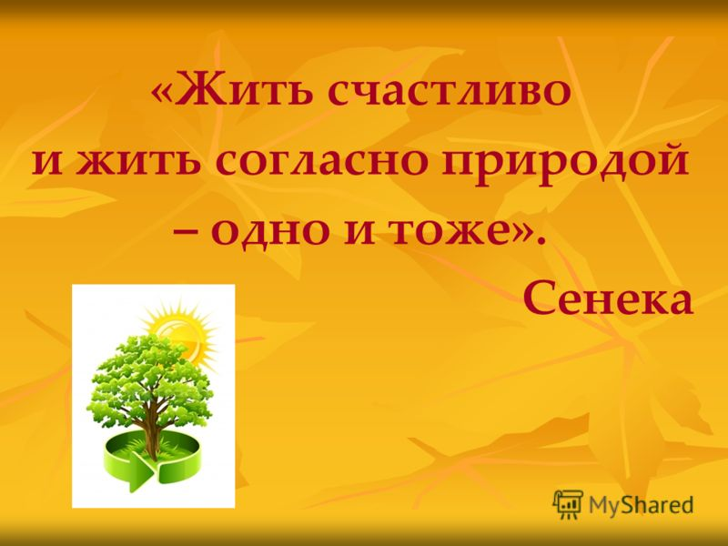 «Жить счастливо и жить согласно природой – одно и тоже». Сенека