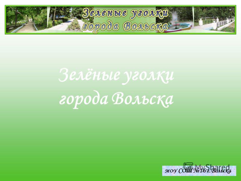 LOGO Зелёные уголки города Вольска МОУ СОШ 16 г.Вольска