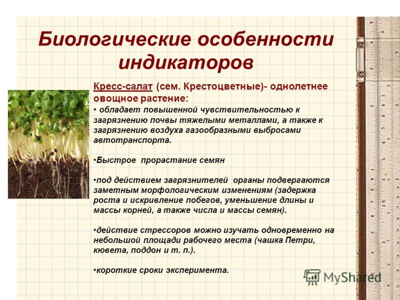 Биологические особенности индикаторов Кресс-салат (сем. Крестоцветные)- однолетнее овощное растение: обладает повышенной чувствительностью к загрязнению почвы тяжелыми металлами, а также к загрязнению воздуха газообразными выбросами автотранспорта. Б