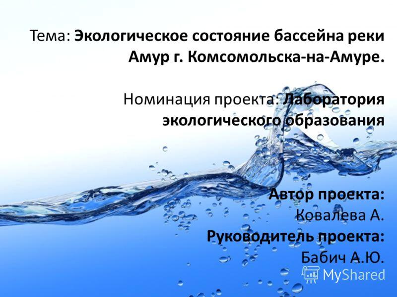 Тема: Экологическое состояние бассейна реки Амур г. Комсомольска-на-Амуре. Номинация проекта: Лаборатория экологического образования Автор проекта: Ковалева А. Руководитель проекта: Бабич А.Ю.