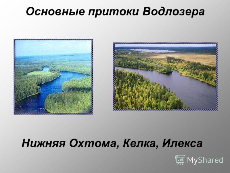 Основные притоки Водлозера Нижняя Охтома, Келка, Илекса