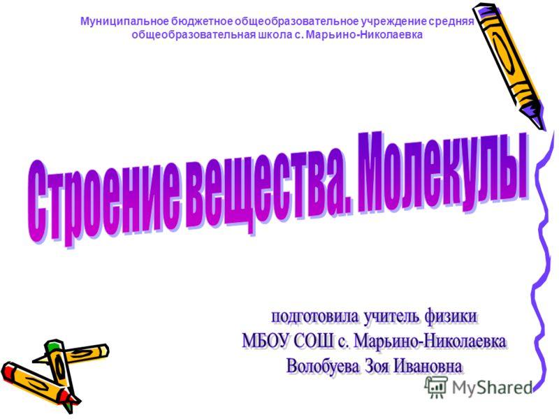 Муниципальное бюджетное общеобразовательное учреждение средняя общеобразовательная школа с. Марьино-Николаевка