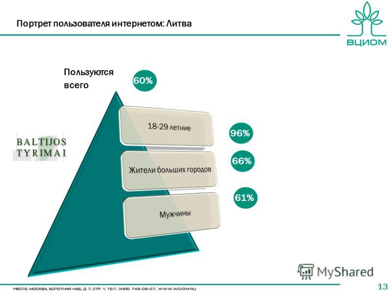 13 Портрет пользователя интернетом: Литва 60% 66% 61% Пользуются всего 96%