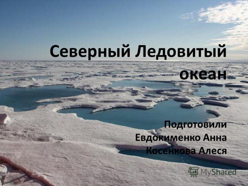 Северный Ледовитый океан Подготовили Евдокименко Анна Косенкова Алеся