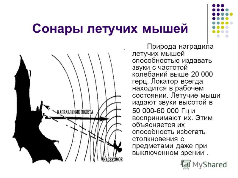 Сонары летучих мышей Природа наградила летучих мышей способностью издавать звуки с частотой колебаний выше 20 000 герц. Локатор всегда находится в рабочем состоянии. Летучие мыши издают звуки высотой в 50 000-60 000 Гц и воспринимают их. Этим объясня