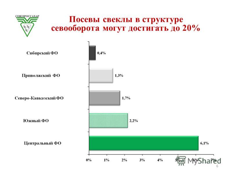 Посевы свеклы в структуре севооборота могут достигать до 20% 6