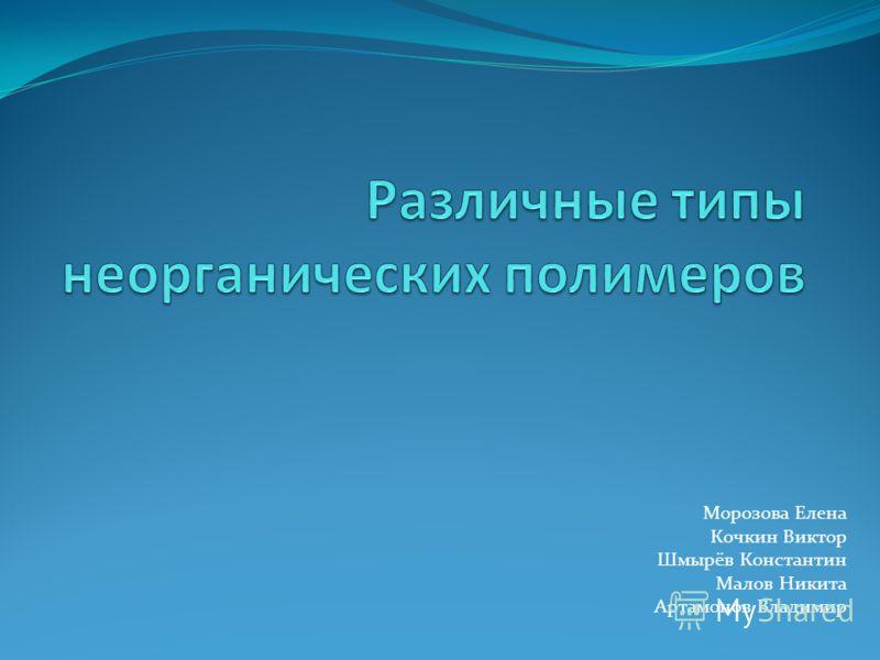 Морозова Елена Кочкин Виктор Шмырёв Константин Малов Никита Артамонов Владимир