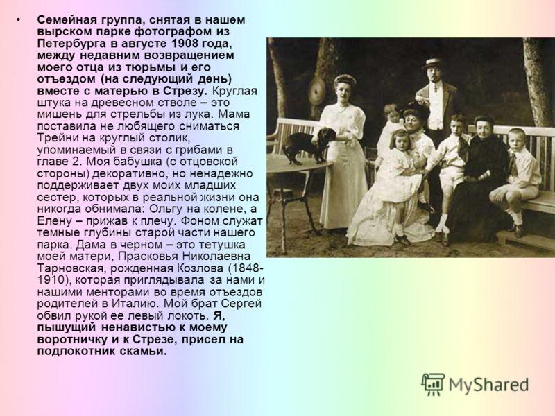 Семейная группа, снятая в нашем вырском парке фотографом из Петербурга в августе 1908 года, между недавним возвращением моего отца из тюрьмы и его отъездом (на следующий день) вместе с матерью в Стрезу. Круглая штука на древесном стволе – это мишень