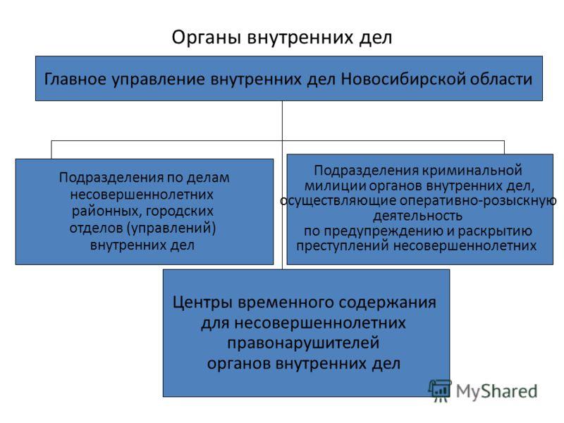 Органы внутренних дел Главное управление внутренних дел Новосибирской области Подразделения по делам несовершеннолетних районных, городских отделов (управлений) внутренних дел Подразделения криминальной милиции органов внутренних дел, осуществляющие