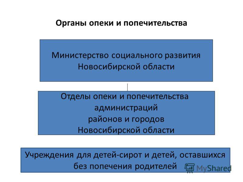 Органы опеки и попечительства Министерство социального развития Новосибирской области Отделы опеки и попечительства администраций районов и городов Новосибирской области Учреждения для детей-сирот и детей, оставшихся без попечения родителей