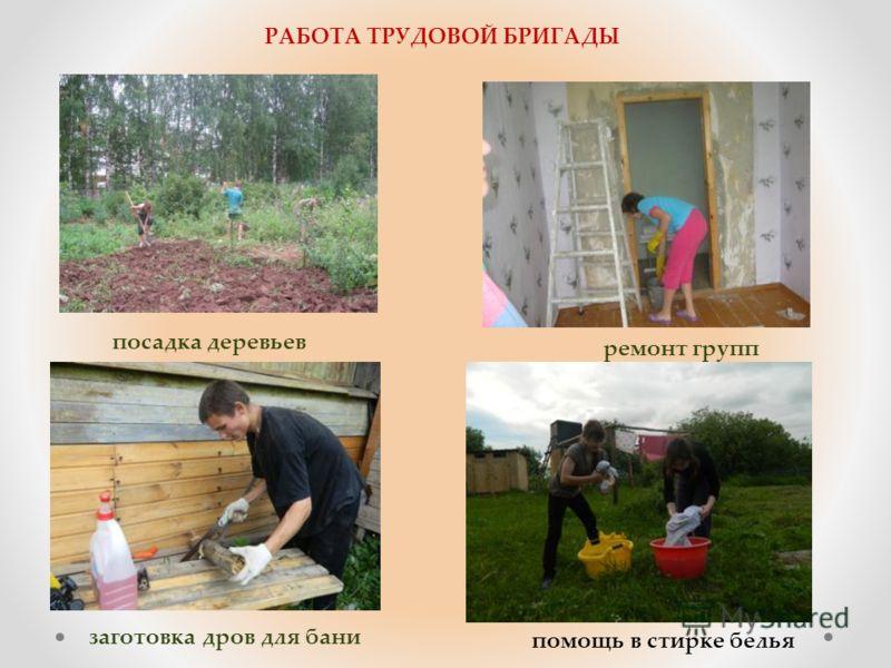 РАБОТА ТРУДОВОЙ БРИГАДЫ посадка деревьев ремонт групп заготовка дров для бани помощь в стирке белья