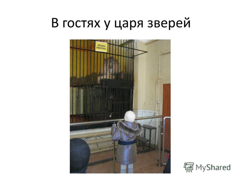 Белый медведь – символ зоопарка Санкт-Петербурга