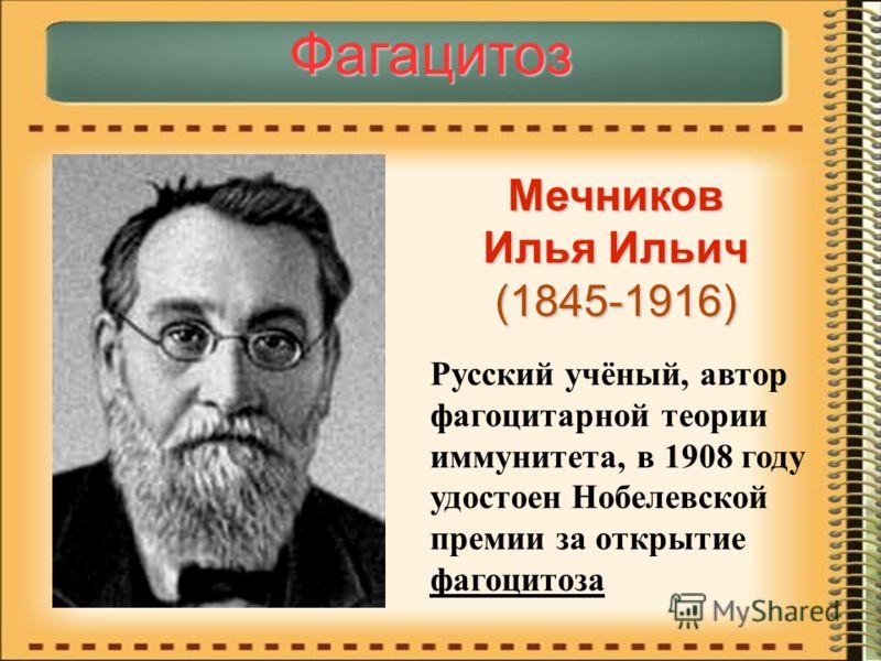 Фагацитоз Мечников Илья Ильич (1845-1916) Русский учёный, автор фагоцитарной теории иммунитета, в 1908 году удостоен Нобелевской премии за открытие фагоцитоза