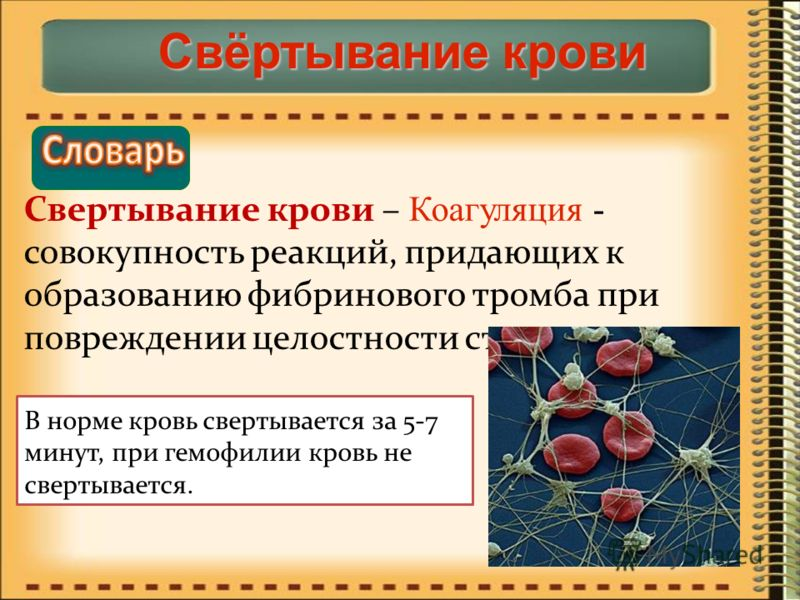 Лечение плохой свертываемости крови у беременных 69