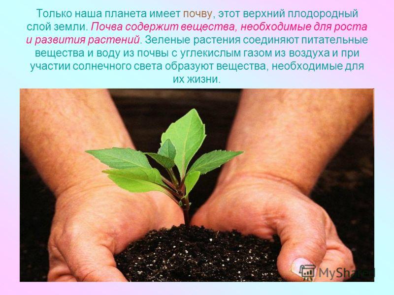 Только наша планета имеет почву, этот верхний плодородный слой земли. Почва содержит вещества, необходимые для роста и развития растений. Зеленые растения соединяют питательные вещества и воду из почвы с углекислым газом из воздуха и при участии сол
