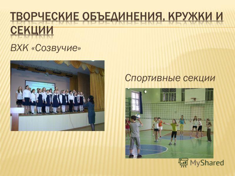 ВХК «Созвучие» Спортивные секции