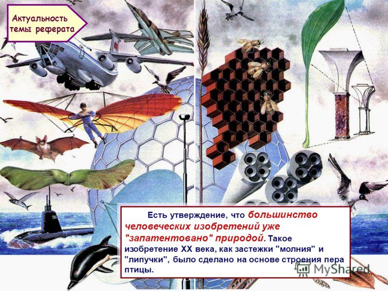 Презентация на тему Бионика синтез биологии и техники  2 Есть утверждение что большинство человеческих изобретений