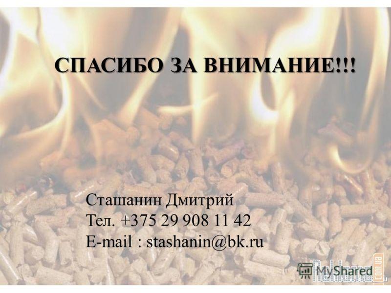 СПАСИБО ЗА ВНИМАНИЕ!!! Сташанин Дмитрий Тел. +375 29 908 11 42 E-mail : stashanin@bk.ru