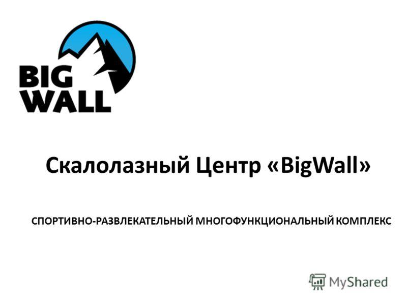 Скалолазный Центр «BigWall» СПОРТИВНО-РАЗВЛЕКАТЕЛЬНЫЙ МНОГОФУНКЦИОНАЛЬНЫЙ КОМПЛЕКС