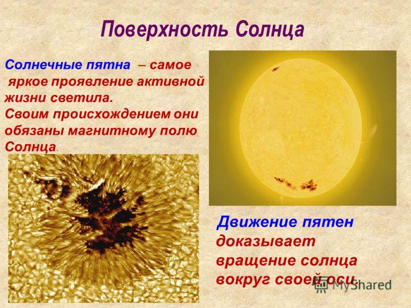 Поверхность Солнца Движение пятен доказывает вращение солнца вокруг своей оси. Солнечные пятна – самое яркое проявление активной жизни светила. Своим происхождением они обязаны магнитному полю Солнца.