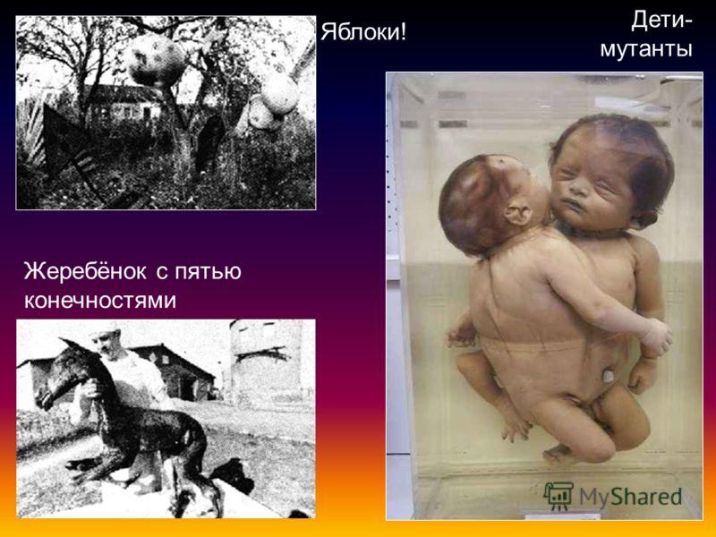 Жеребёнок с пятью конечностями Дети- мутанты Яблоки!