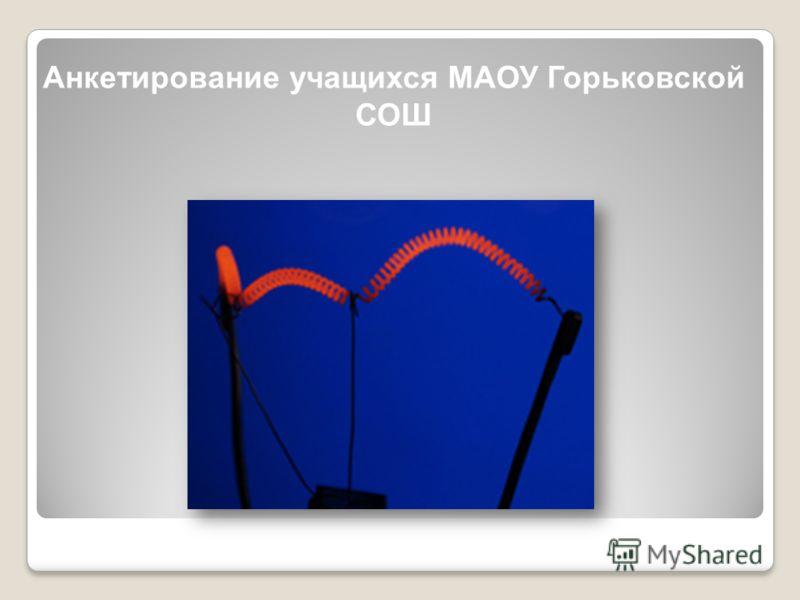 Анкетирование учащихся МАОУ Горьковской СОШ