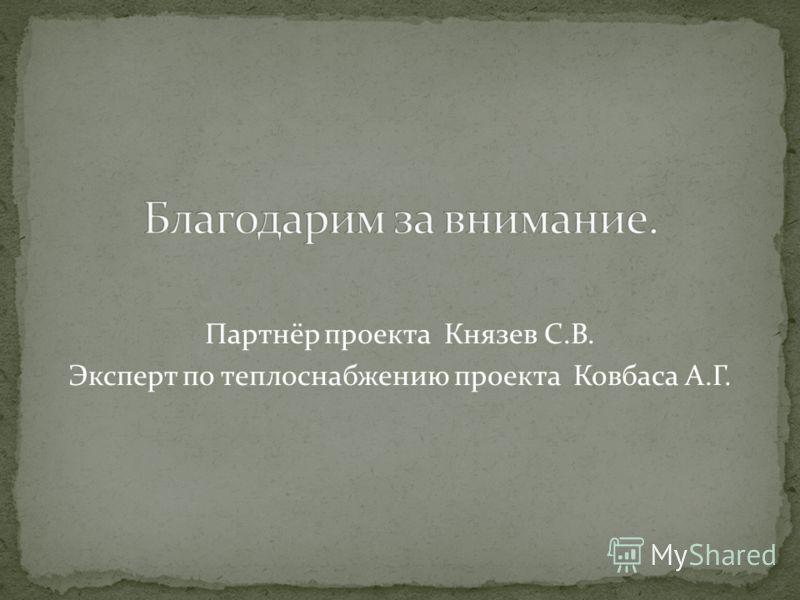 Партнёр проекта Князев С.В. Эксперт по теплоснабжению проекта Ковбаса А.Г.