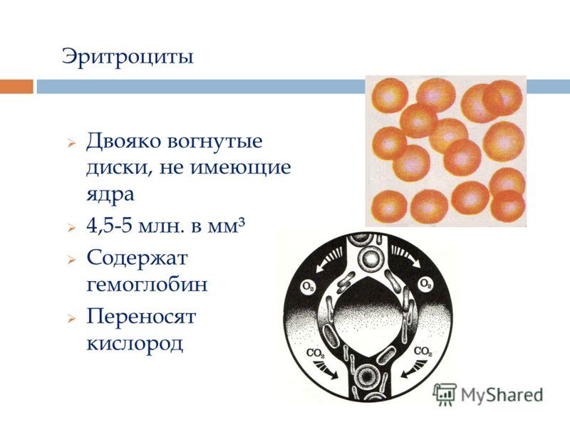 Эритроциты Двояко вогнутые диски, не имеющие ядра 4,5-5 млн. в мм³ Содержат гемоглобин Переносят кислород