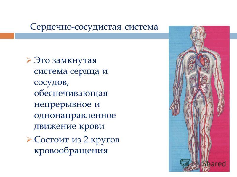 Сердечно-сосудистая система Это замкнутая система сердца и сосудов, обеспечивающая непрерывное и однонаправленное движение крови Состоит из 2 кругов кровообращения
