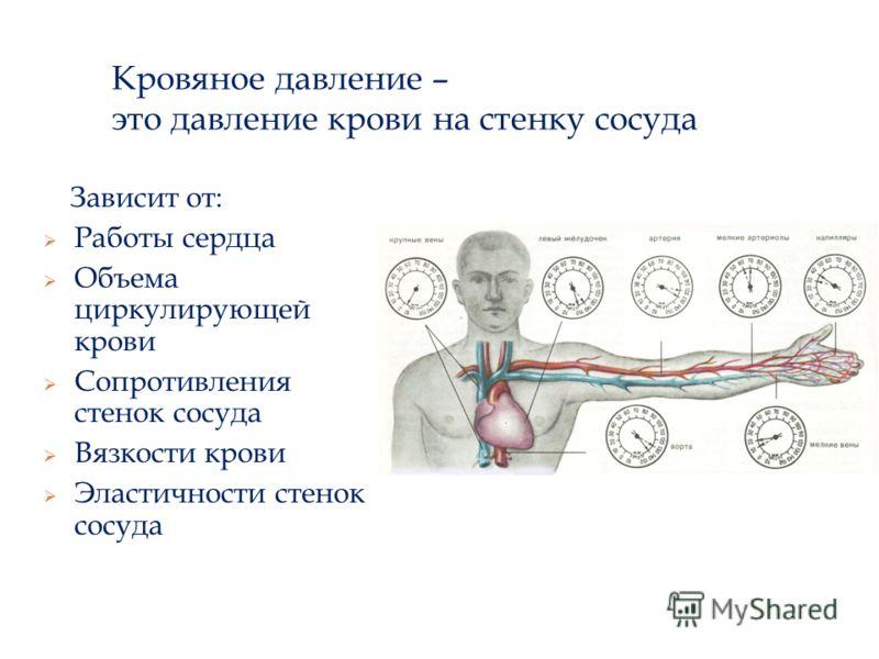 Кровяное давление – это давление крови на стенку сосуда Зависит от: Работы сердца Объема циркулирующей крови Сопротивления стенок сосуда Вязкости крови Эластичности стенок сосуда