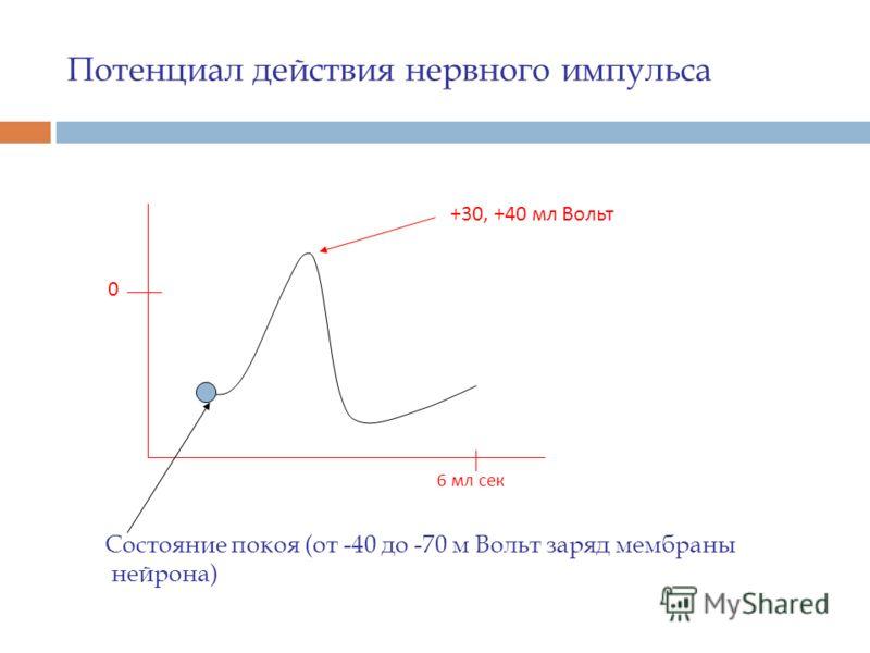Потенциал действия нервного импульса Состояние покоя (от -40 до -70 м Вольт заряд мембраны нейрона) 0 6 мл сек +30, +40 мл Вольт