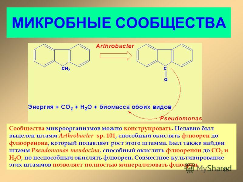 МИКРОБНЫЕ СООБЩЕСТВА Сообщества микроорганизмов можно конструировать. Недавно был выделен штамм Arthrobacter sp. 101, способный окислять флюорен до флюоренона, который подавляет рост этого штамма. Был также найден штамм Pseudomonas mendocina, способн