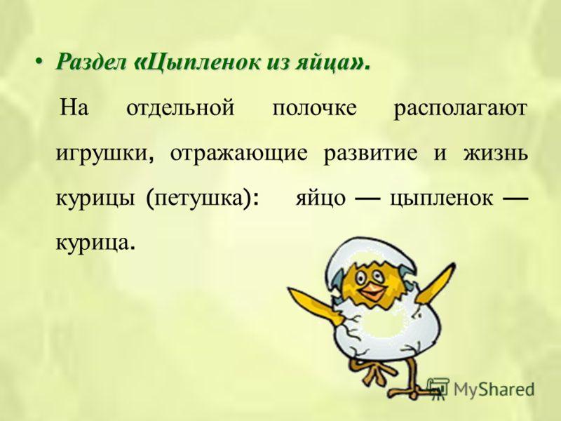 Раздел « Цыпленок из яйца ».Раздел « Цыпленок из яйца ». На отдельной полочке располагают игрушки, отражающие развитие и жизнь курицы ( петушка ): яйцо цыпленок курица.