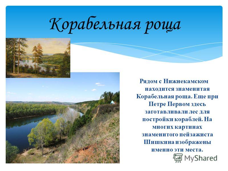Корабельная роща Рядом с Нижнекамском находится знаменитая Корабельная роща. Еще при Петре Первом здесь заготавливали лес для постройки кораблей. На многих картинах знаменитого пейзажиста Шишкина изображены именно эти места.
