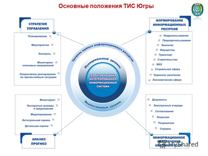 Основные положения ТИС Югры