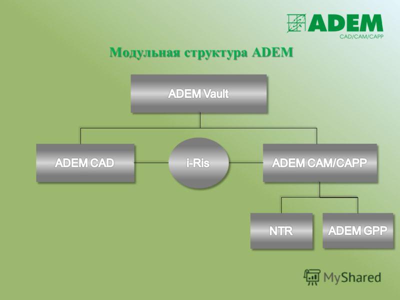 Модульная структура ADEM