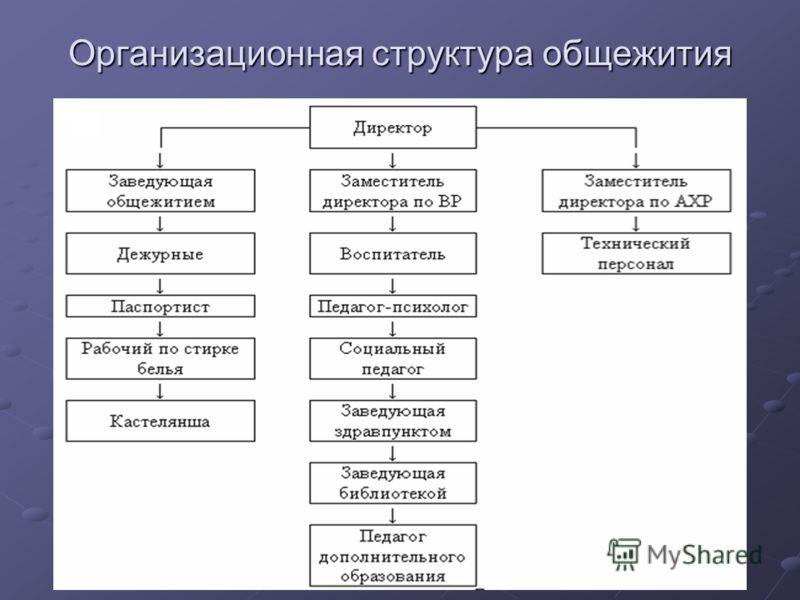Организационная структура общежития