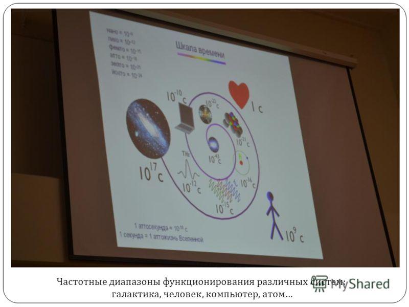 Частотные диапазоны функционирования различных систем : галактика, человек, компьютер, атом …