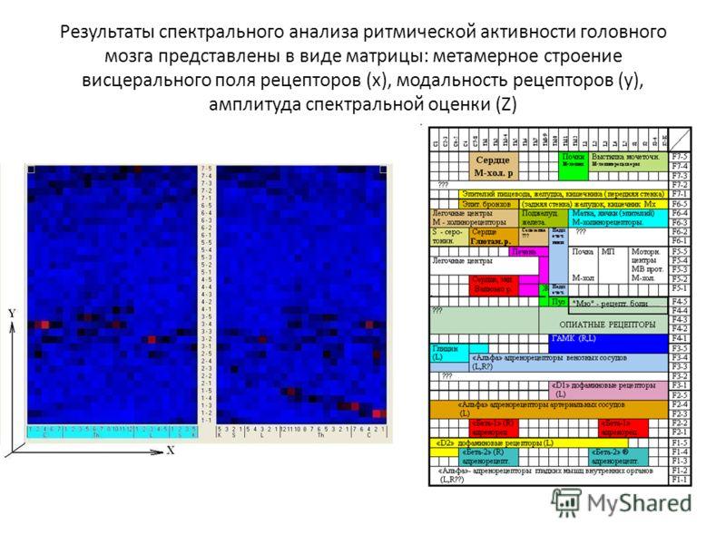 Результаты спектрального анализа ритмической активности головного мозга представлены в виде матрицы: метамерное строение висцерального поля рецепторов (x), модальность рецепторов (y), амплитуда спектральной оценки (Z)